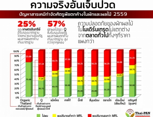 ผักผลไม้ตรา Organic Thailand พบสารเคมีตกค้างเกินมาตรฐาน 25%