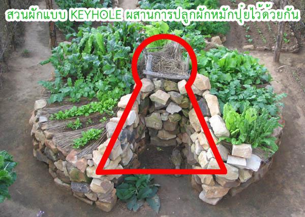 KEYHOLE-Garden-09