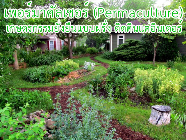 Permaculture-02-01