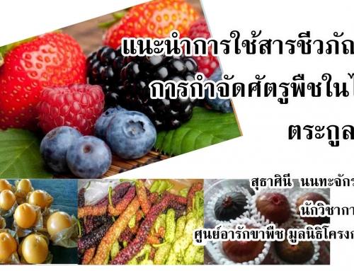 แนะนำการใช้สารชีวภัณฑ์ในการกำจัดศัตรูพืชในไม้ผลตระกูลเบอร์รี่